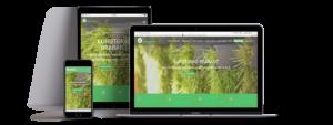 webdesign-Oirschot-bedrijfswebsite-kunstgras-brabant-Webprofessor